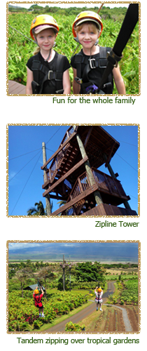 family fun, the zipline tower and tandem zipping